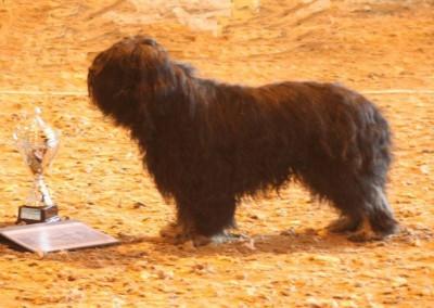 BIM vandringspris-2005